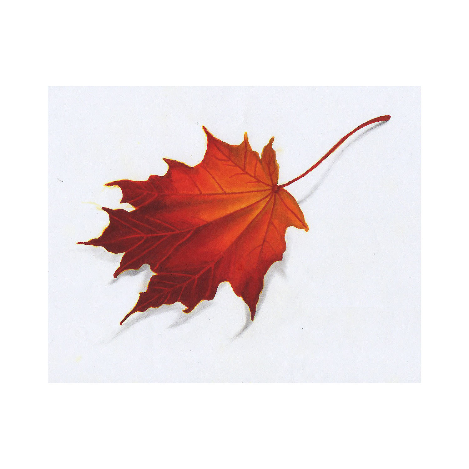 autumn fall leaf drawing color Stygian Gallery